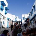 Qué ver y hacer en Sidi Bou Said
