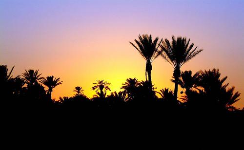 Jerba Island, Tunez