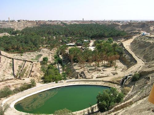 el Oasis de Nefta