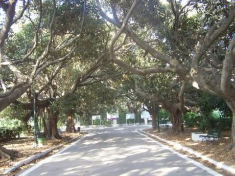 El jardin Botanico Parc Essaada