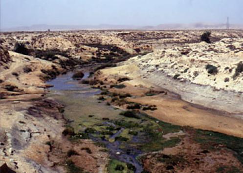 Oued El Akarit