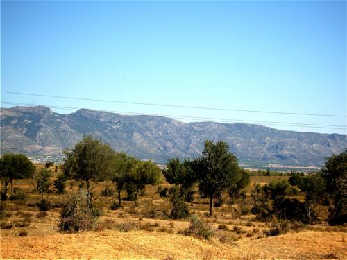 La Reserva Natural del Jebel Serj