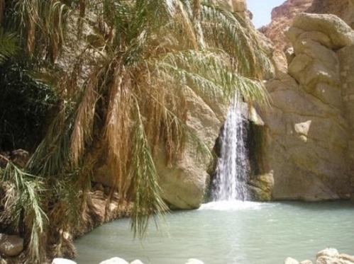 Tozeur, un verdadero oasis