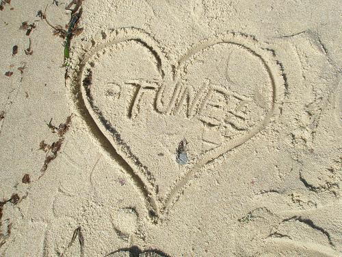 Consejos para viajar a Túnez