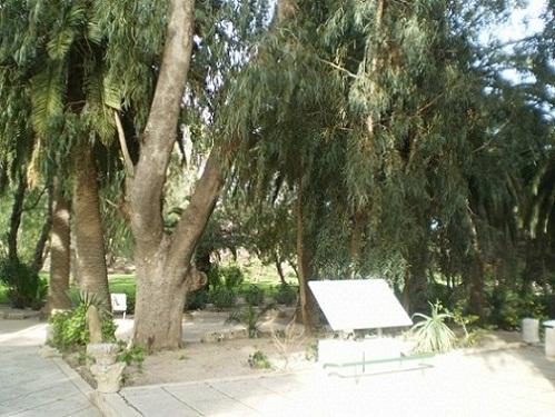 Santuario de Tofet