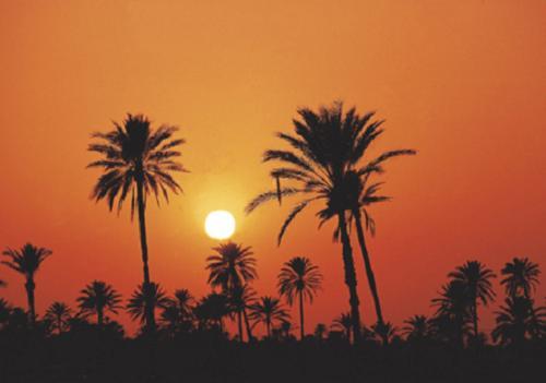 Pruebas ciclistas en el Sahara