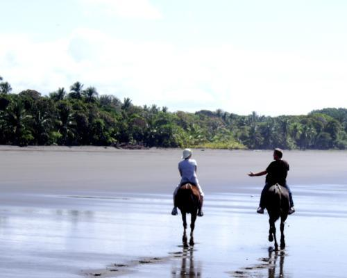Paseo a caballo por Túnez